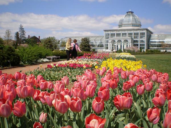 Historic Garden Week Cville Niche